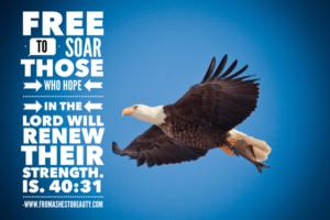 Monday Motivation: Free To Soar