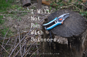 I Will Not Run With Scissors